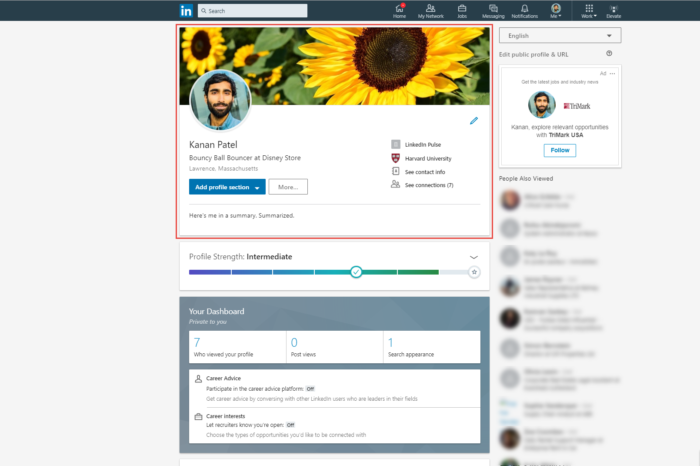 WiderFunnel LinkedIn custom experimentation metric